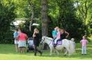 Pony rijden met hemelvaart _2